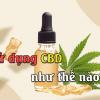 Sử dụng CBD như thế nào - Chợ 420 - cho420.com
